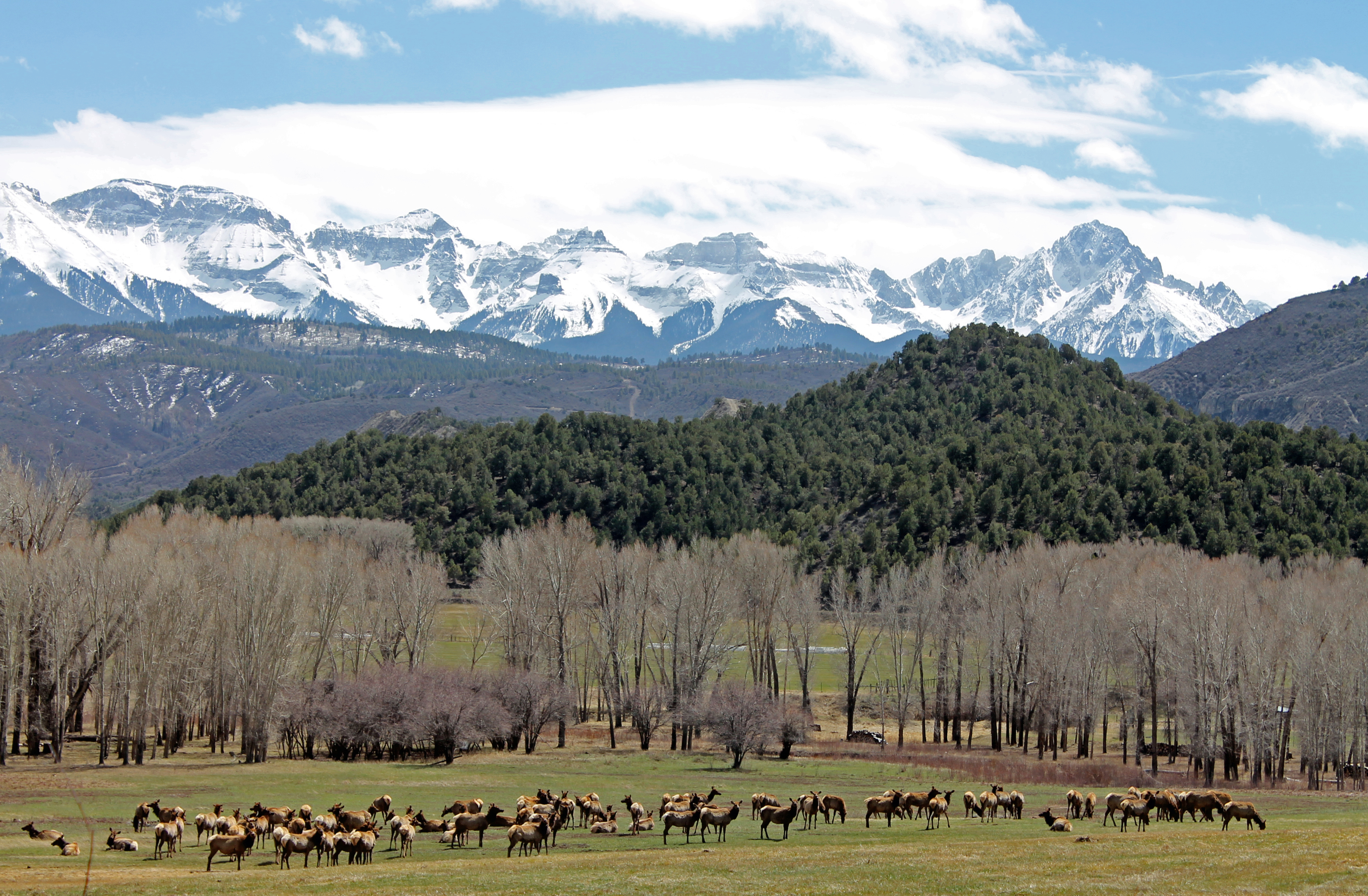 sacred san juan mountains